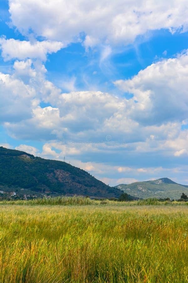 Erbe, nuvole e montagna gialle immagine stock