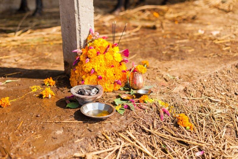 Erbjuda för Tihar festival arkivbilder