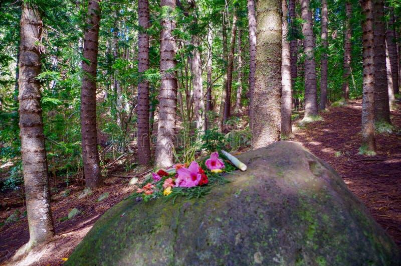Erbjuda på att sova jätten, Nounou Forest Reserve, Kauai, Hawaii, USA arkivbilder