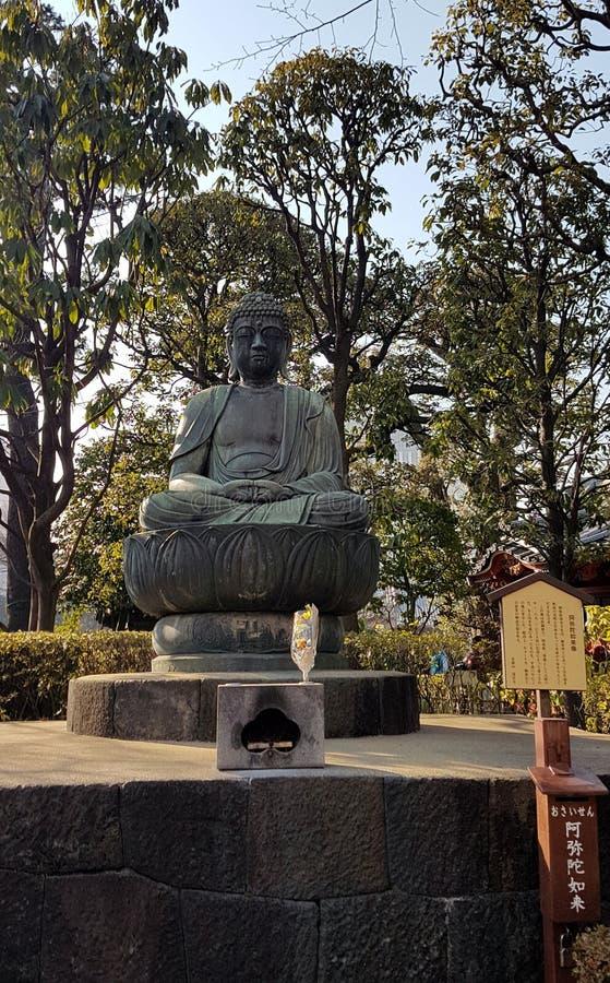 erbjuda till buddha i freden av parkera royaltyfri bild