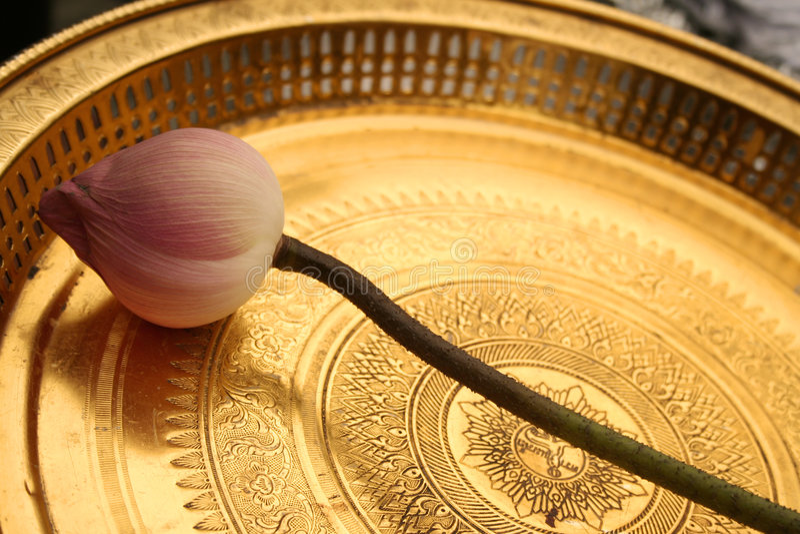 erbjudande tempel thailand för guld- lotusblomma arkivfoto