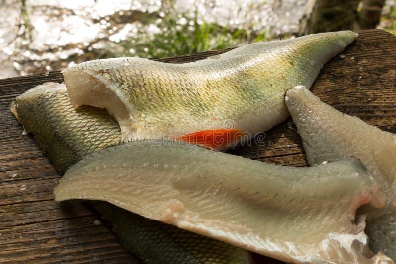 Żerdź rybia przepasuje na drewnianej przepasuje desce zdjęcie royalty free