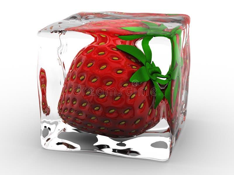 Erdbeere lizenzfreie abbildung