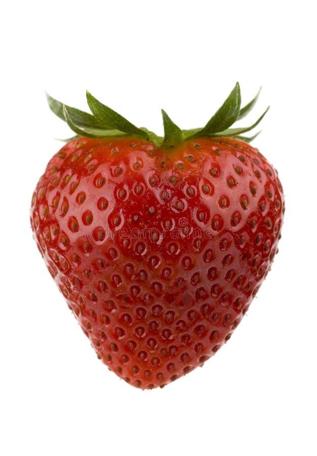 Erdbeere. lizenzfreies stockfoto
