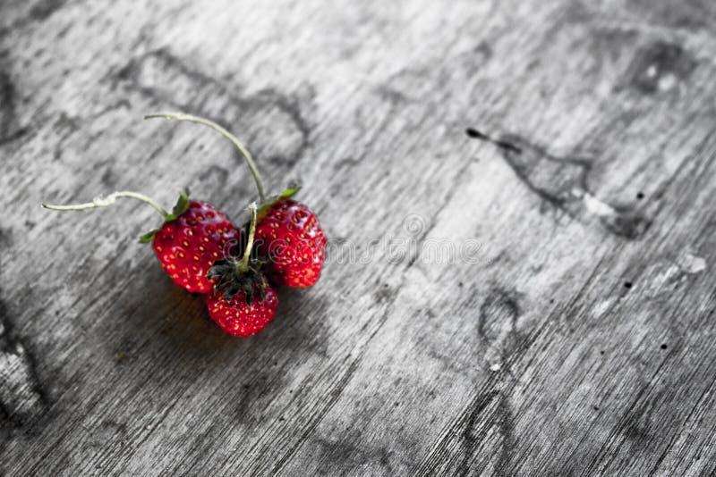 Erdbeere 02 lizenzfreies stockbild