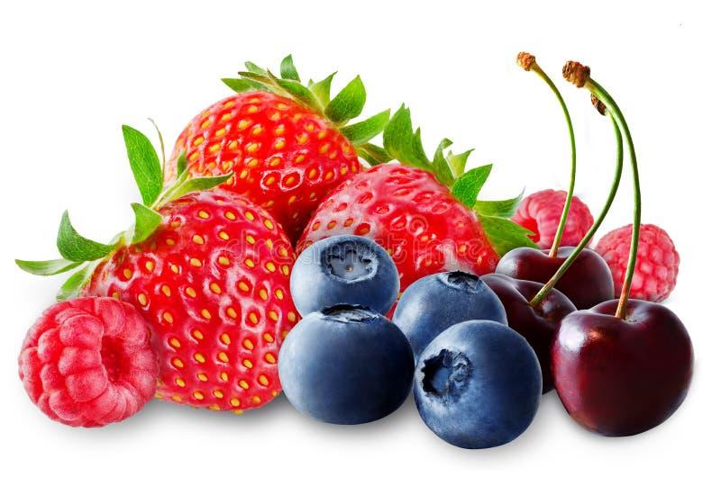 Erdbeere, Blaubeere, Kirsche, Himbeere auf einem weißen lokalisierten Hintergrund lizenzfreie stockfotografie