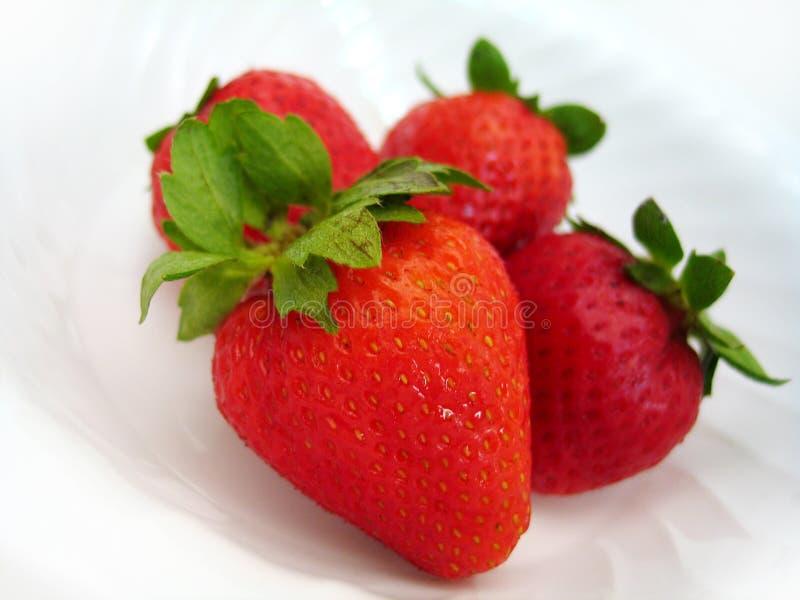 Erdbeere delite stockfotos
