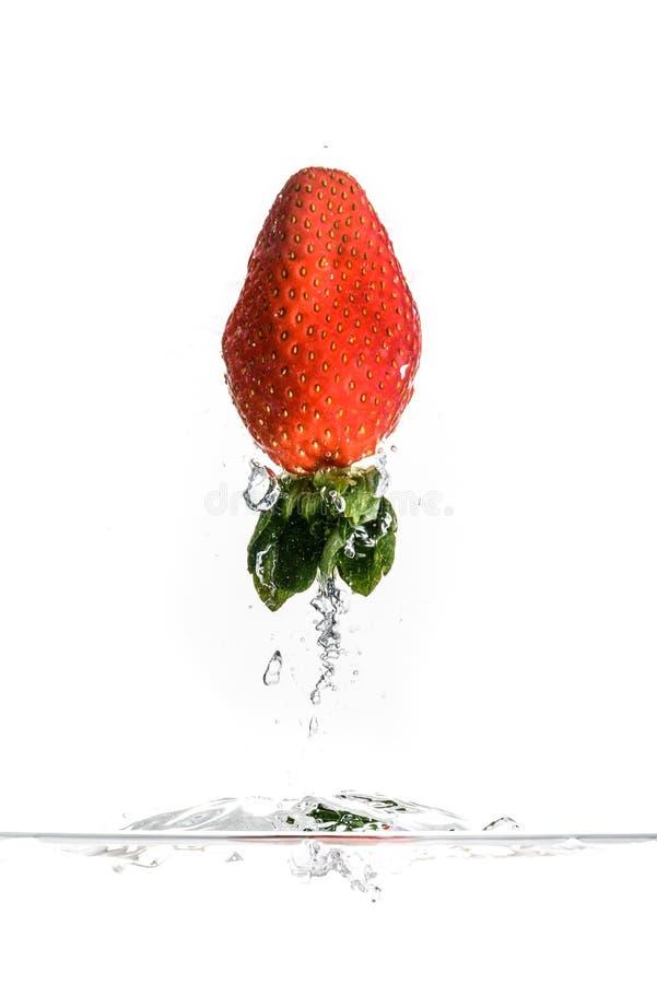 Erdbeere, die in Wasser spritzt lizenzfreie stockfotografie