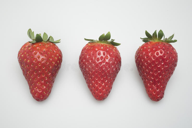 Erdbeere drei lizenzfreie stockfotos