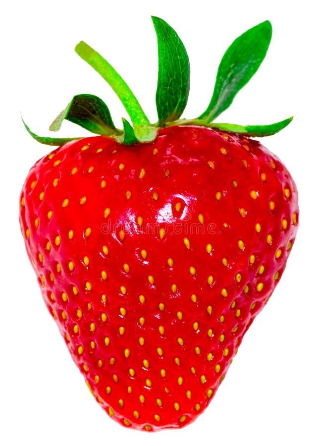 Erdbeere getrennt auf weißem Hintergrund Über Weiß stockfoto