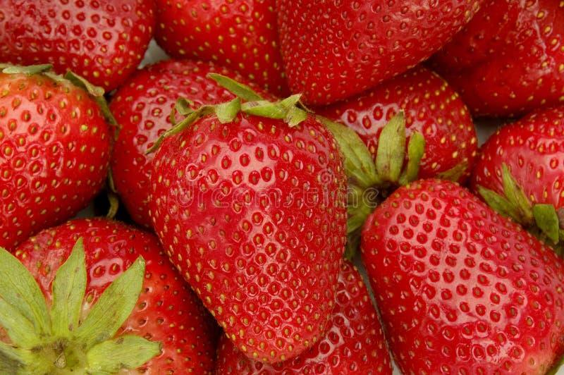 Erdbeere-Hintergrund lizenzfreies stockfoto