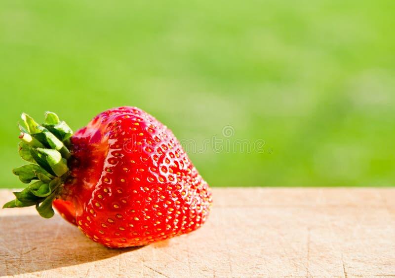 Erdbeere im natürlichen Hintergrund lizenzfreie stockfotos