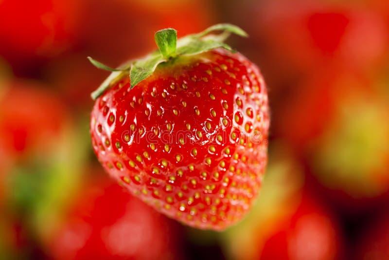 Erdbeere im Vordergrund lizenzfreie stockfotografie