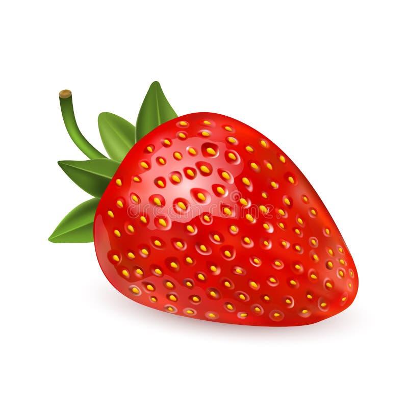 Erdbeere Süße Frucht Ikonen des Vektors 3d eingestellt Realistische Abbildung Erdbeerrealistischer Ikonenvektor lizenzfreie abbildung
