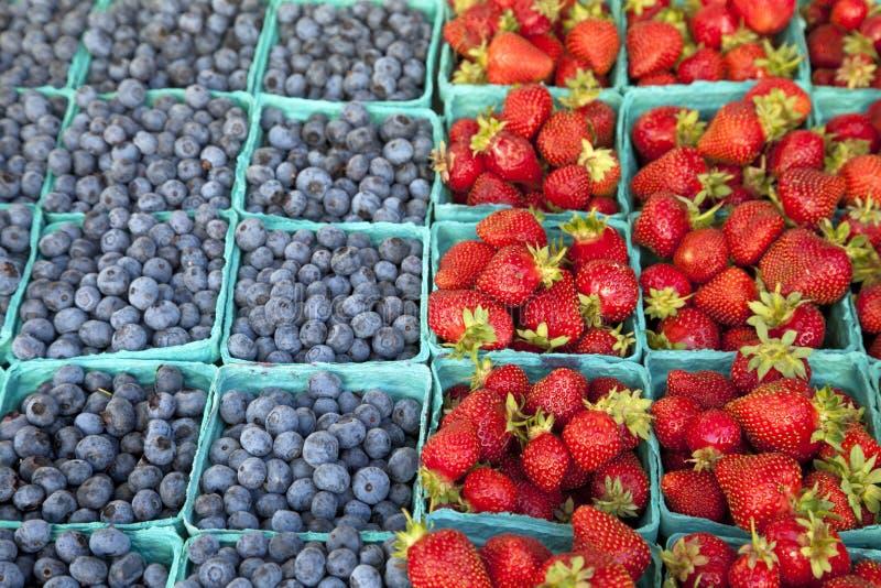 Erdbeere und Blaubeere stockfotografie