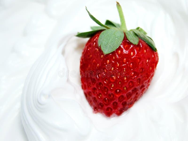Erdbeere und Peitsche 3 stockfotos