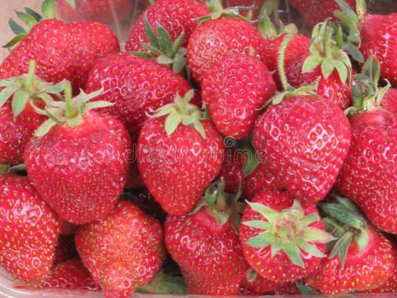 Erdbeere Viele Erdbeeren Rote Beeren basar grüner Pferdeschwanz Fr?chte f?r Verkauf Ich habe Jahre für Verkauf Frische Beeren Fre stockfotos