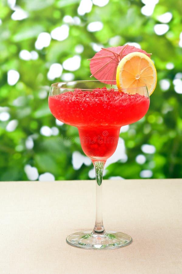Erdbeere-WassermeloneDaiquiri lizenzfreie stockfotografie