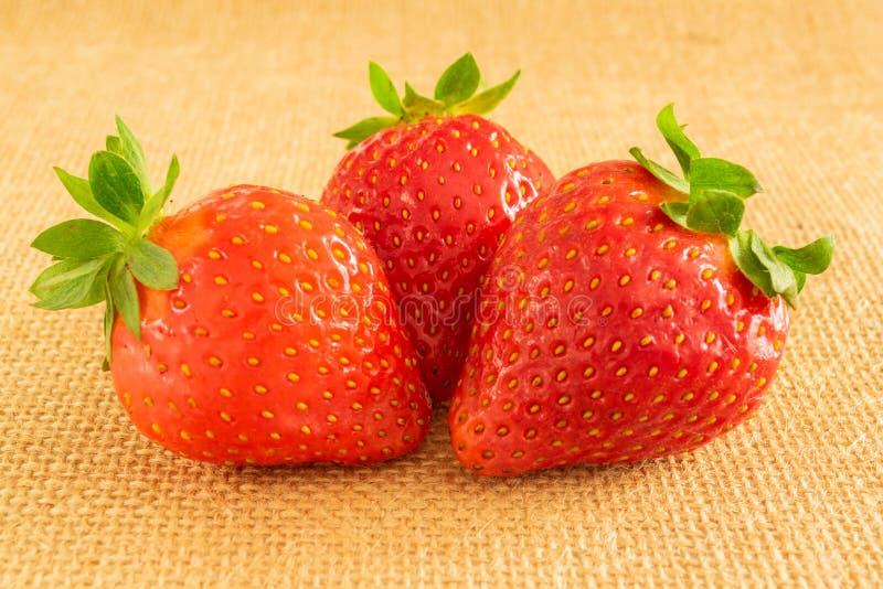 Erdbeeren auf Textilhintergrund stockbild