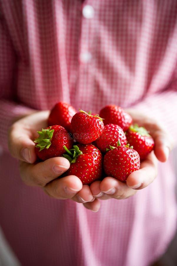 Erdbeeren in den Händen stockbilder