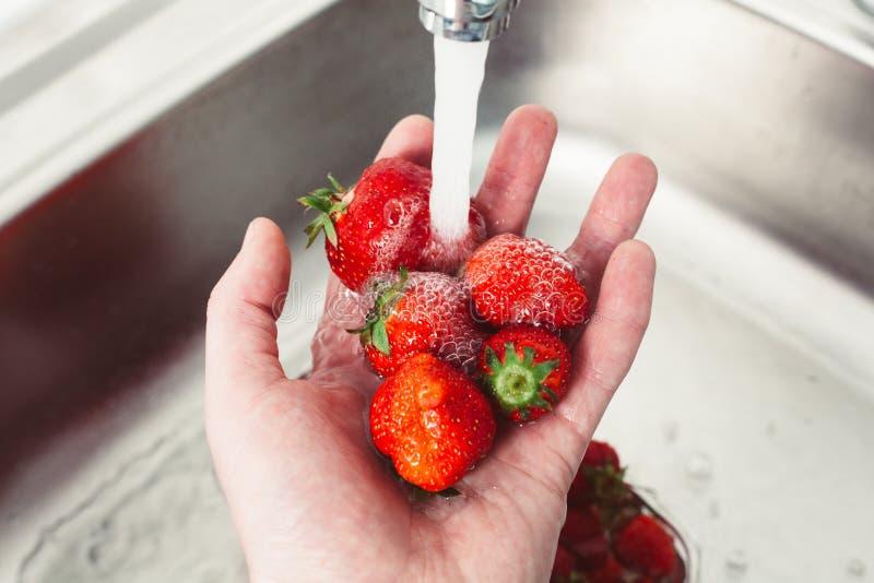 Erdbeeren in den Händen unter dem Wasser Reine Frucht ist Gesundheit stockbild