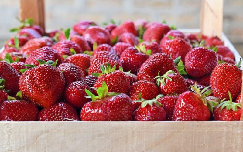 Erdbeeren in der Holzkiste stockfotos