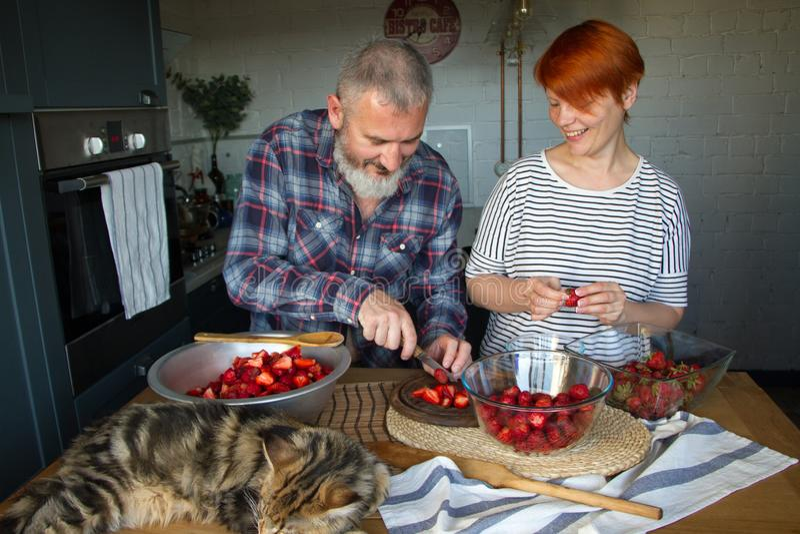Erdbeeren erwachsener Paarmann und der Frauenschale und -schnittes für Erdbeermarmelade, ziehen sich, Spaß, Maine Coon zu lachen  lizenzfreie stockbilder
