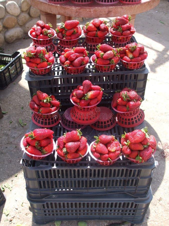 Erdbeeren für Verkauf lizenzfreie stockfotografie