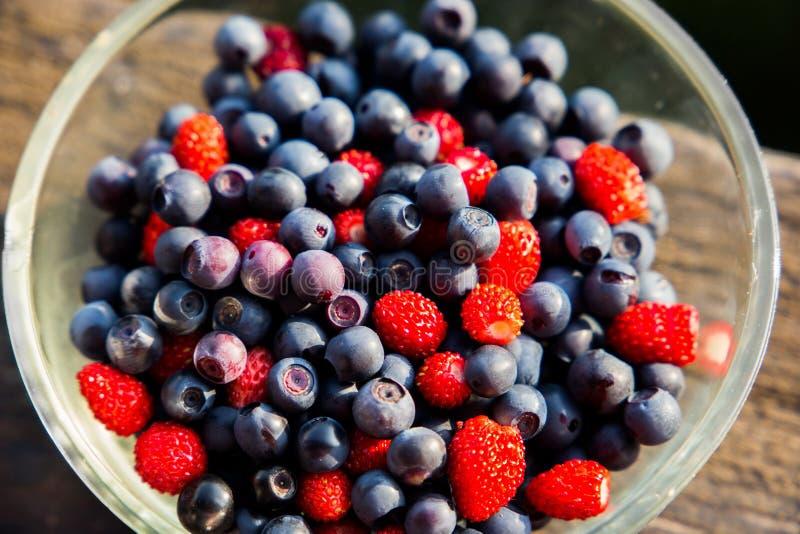 Erdbeeren und Blaubeeren lizenzfreie stockbilder
