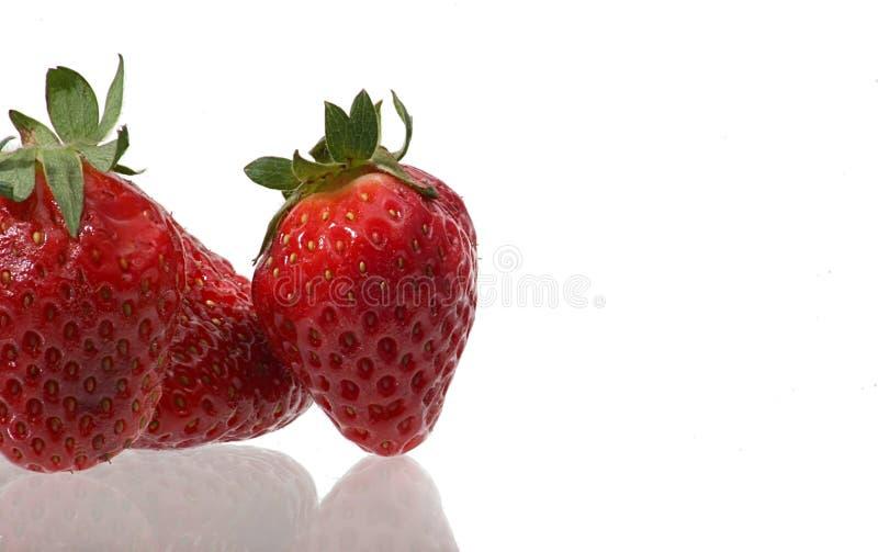 Erdbeeren V lizenzfreie stockfotografie