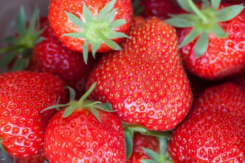 Erdbeernahes hohes lizenzfreies stockfoto