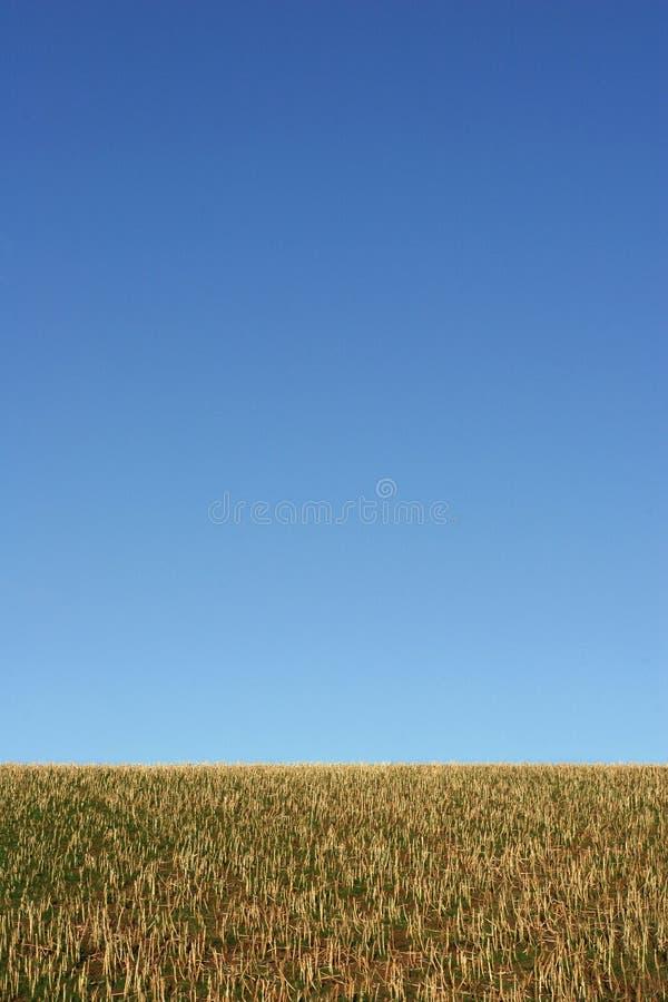 Erde und Himmel lizenzfreies stockfoto