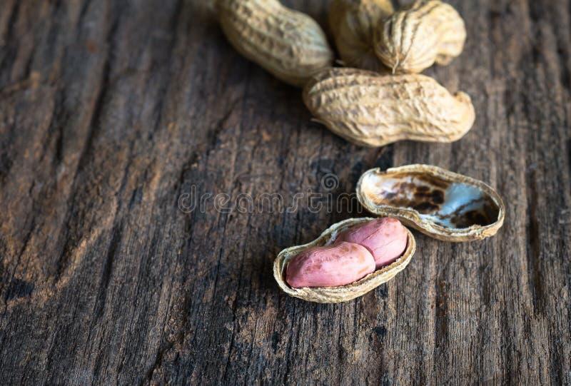 Erdnüsse in den Shells lizenzfreies stockfoto