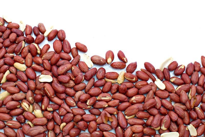 Erdnüsse schließen oben auf Weiß stockfotografie
