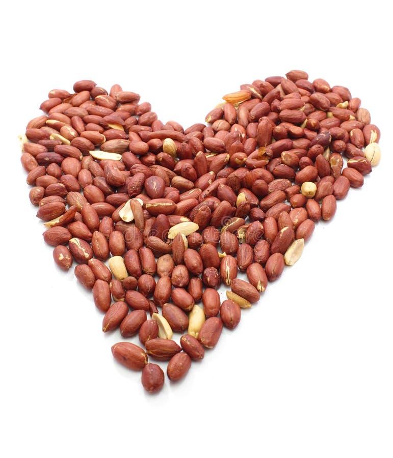 Erdnüsse schließen oben auf Weiß lizenzfreies stockbild