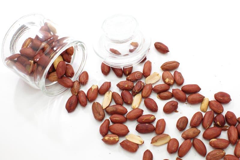 Erdnüsse schließen oben auf Weiß lizenzfreie stockbilder