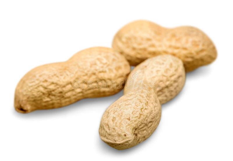 Erdnuss, Acajounüsse, Pekannuss, Mandel an lokalisiert stockfotos