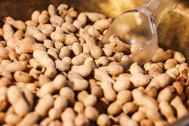 Erdnuss in einer Oberteilbeschaffenheit sehr viele Fleischmehlklöße stockfotos