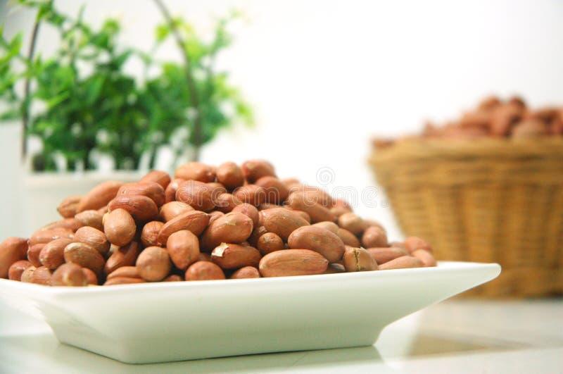 Erdnusslebensmittel mit Anlagen stockfoto