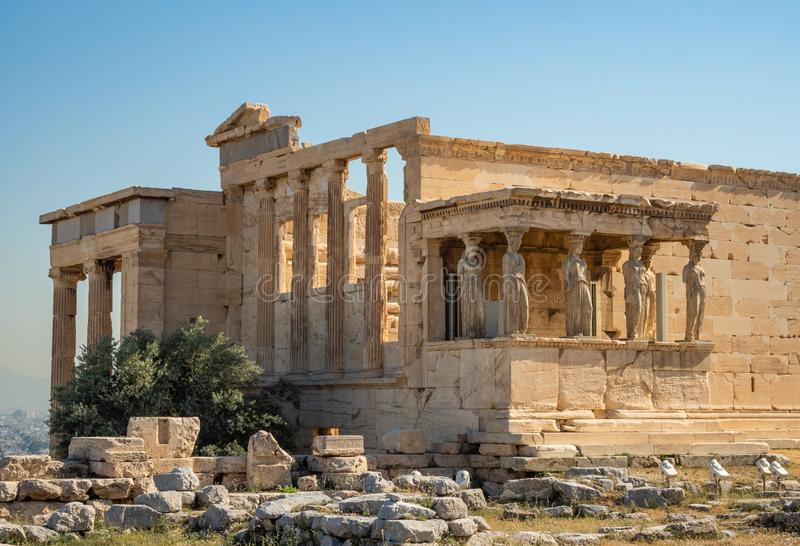 Erechtheion - ένας ναός αρχαίου Έλληνα σκεπαστή είσοδο πρόσοψης και έξι καρυάτιδες, που χτίζονται με προς τιμή την Αθήνα και Pose στοκ εικόνα