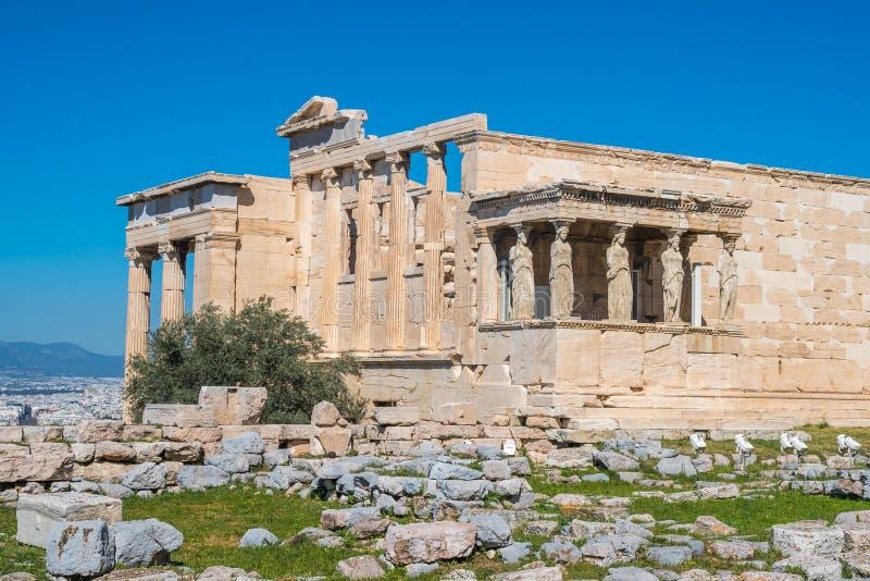 Erechtheion e templo do Athene no monte da acrópole em Grécia imagens de stock royalty free