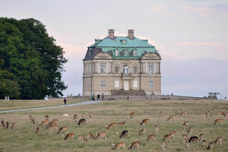 Eremu pałac obraz stock