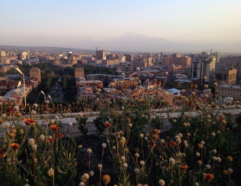 Erevan royaltyfri foto