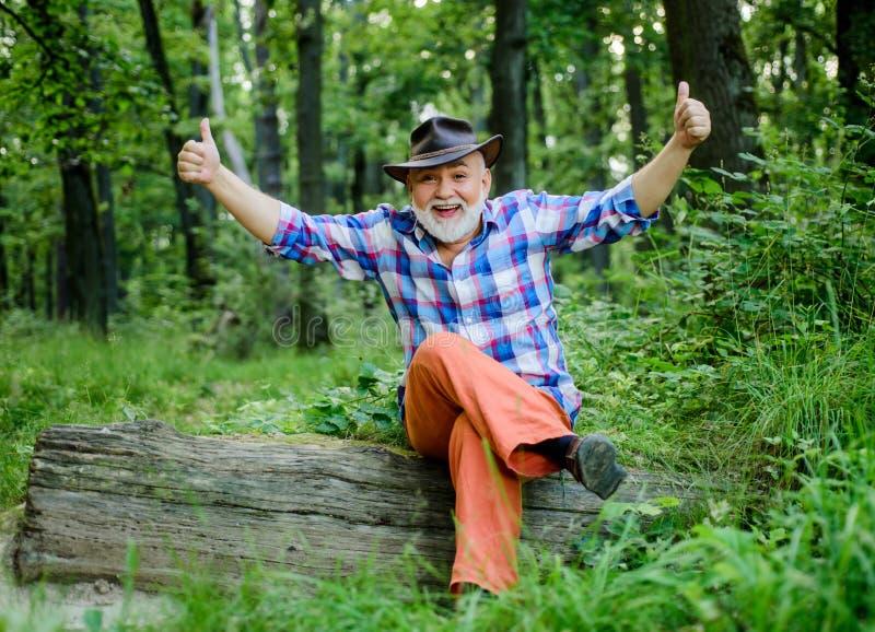 Erfolg Bauer sitzt auf Holz glücklicher Forscher Mensch und Natur Wandern in tiefem Holz Waldbesitzer Sommer oder Frühling lizenzfreies stockbild
