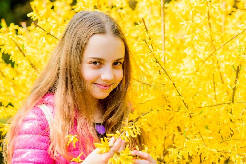 Erforschen Sie Garten Exkursion zum botanischen Garten Anlagen gewachsen f?r Anzeige auf ?ffentlichkeit M?dchenweg im botanischen lizenzfreie stockfotografie