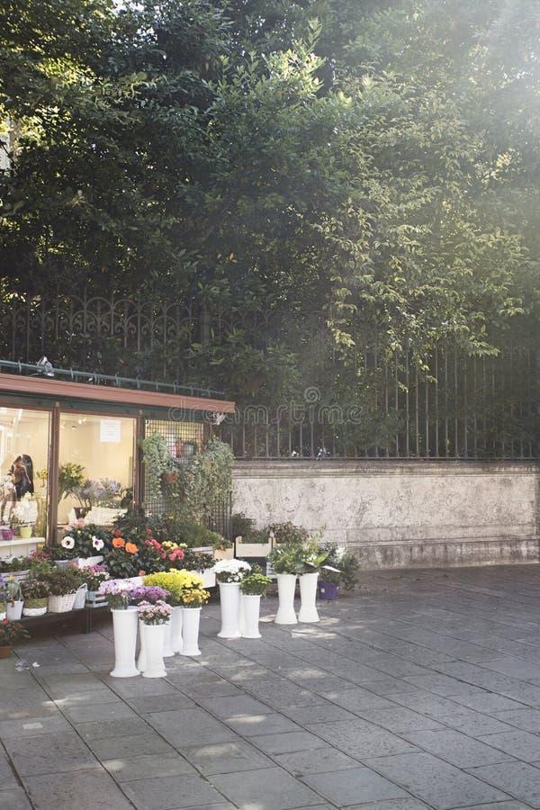 Erforschungsvenedig durch einen Bürgersteigsblumenladen mit einer Sonne erweitern sich lizenzfreie stockfotos