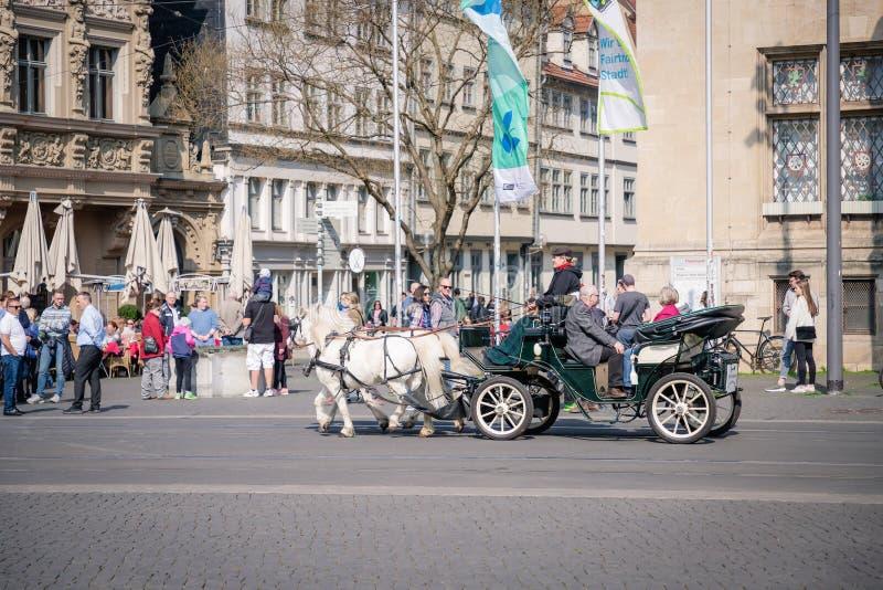 Erfurt Tyskland April 7, 2019 Häst-drivande vagn i centret arkivbilder