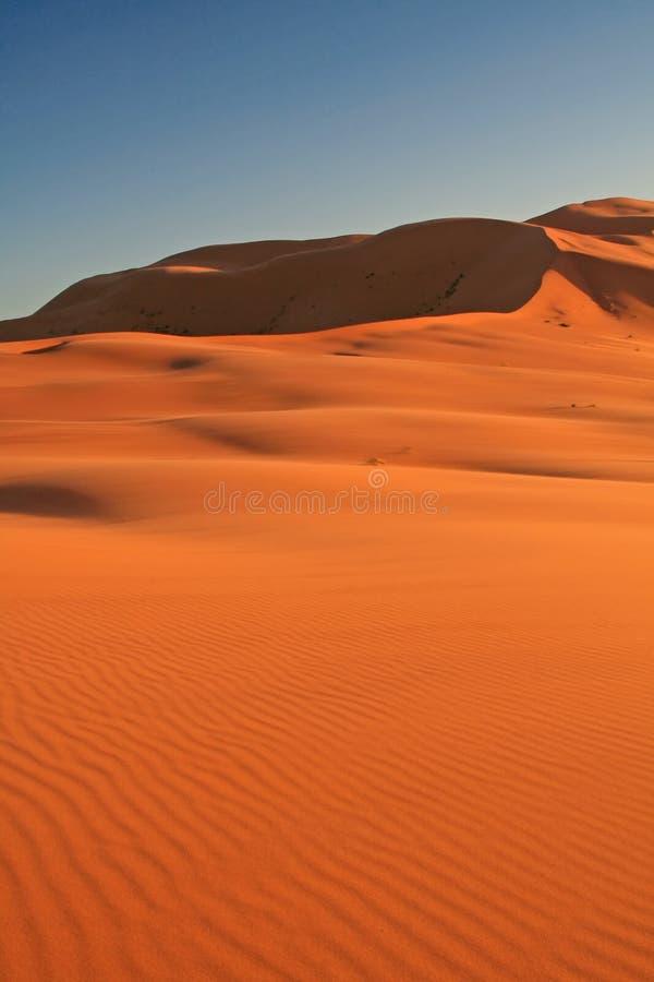 Download Erg αμμόλοφων chebbi άμμος στοκ εικόνες. εικόνα από ριψοκινδυνεμμένο - 2228028