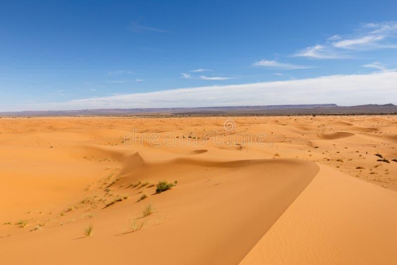 Erg Chebbi in Marokko stockbilder