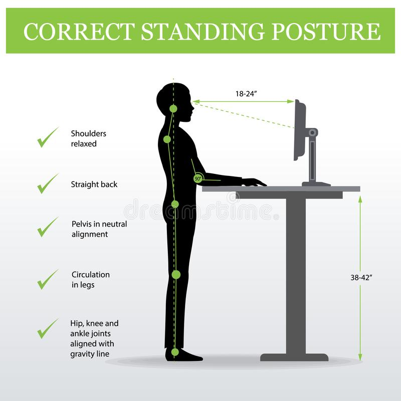 Free Ergonomic. Correct Standing Posture And Height Adjustable Table Royalty Free Stock Photos - 103708478